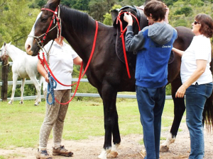 Fordsdale Horse Riding Lessons and Events, learning how to saddle a horse
